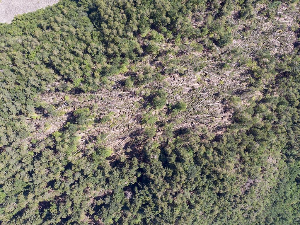 mappatura aree con droni - fotogrammetria